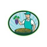 Farm Boy Holding Grapes Bowl Raisins Oval Retro Stock Images