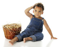 Farm Boy with Potato Produce. An adorable preschool farm-boy by a basketful of potatoes.  On a white background Stock Image