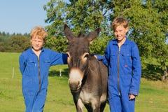 Farm Boys with their donkey. Farm boys posing with their donkey royalty free stock image