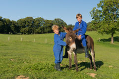 Farm Boys with their donkey. Farm boys riding on their donkey stock image