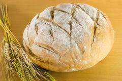 Farm bread. With wheat leaves Stock Images