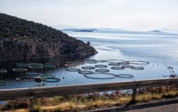 Farm for the breeding of mussels and oysters. In Greece Royalty Free Stock Photos