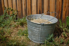 Farm Bucket Filled With Grain Royalty Free Stock Images