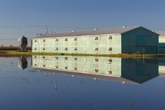 Farm Building Reflection, Cranberry Bog Royalty Free Stock Photos