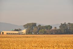 Farm Buildings. Agricultural buildings in trees below Magaliesberg Mountains South Africa Stock Photography