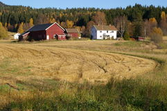 Farm buildings in countryside Stock Photography
