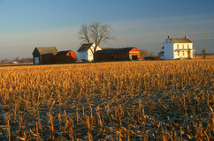 Farm buildings and field in winter