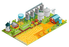 Farm Buildings Isometric Landscape Royalty Free Stock Images