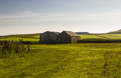 Farm buildings near Cragg Lough on the Roman Wall. Northumberland, England. Royalty Free Stock Image