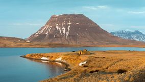 Farm cabin and horses in grazing light at the base of Kirkjufell mountain, Grundarfjordur, Iceland Royalty Free Stock Photos