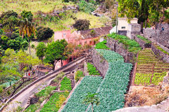 Farm in Cape verde island Sao Antao Royalty Free Stock Images