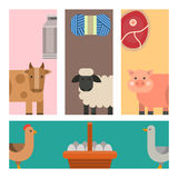 Farm cards vector illustration nature food harvesting grain agriculture different animals characters. Farm animals cards vector illustration nature food Royalty Free Stock Photo