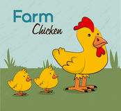 Farm chicken label Stock Photography