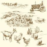 Farm collection. Original hand drawn farm collection Royalty Free Stock Photos