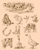 Farm collection-handmade drawing Stock Photos