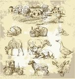 Farm collection-handmade drawing Royalty Free Stock Image