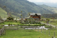 The farm in colombia. The farm and house in salento, colombia Royalty Free Stock Photos