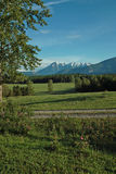 Farm, Columbia River Valley, BC, Canada. Skyway, Highway #3, between Cranbrook and Fernie, BC Canada. Kootenay Rockies are in the distance. Wild roses in Royalty Free Stock Photos