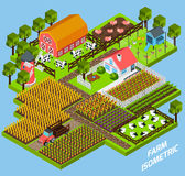 Farm complex isometric blocks composition Royalty Free Stock Photography