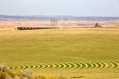 Farm with contoured planting for pivot irrigation. Farmland with contoured planting for pivot irrigation showing the alternating curved pattern allowing for the Royalty Free Stock Photos