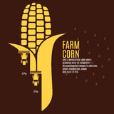 Farm corn vector illustration. Infographic. EPS 10 Royalty Free Stock Photography