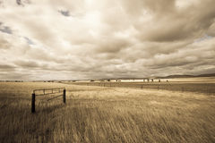Farm country outback Australia draught Stock Images