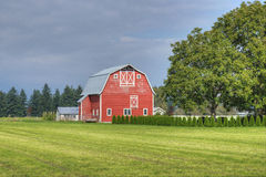 Farm Country Scene Royalty Free Stock Photography
