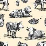Farm cows, homemade cottage cheese, milk seamless pattern hand drawn in a graphic style. Vintage digital engraving