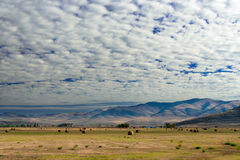 Farm with cumulus clouds, Montana Stock Photo