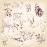 Farm der Tiereansammlung Stockfotos