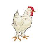 Farm- der Tiereikone der Hühnerskizze Dekorativer Hintergrund als stilisiert Strudel der Wellen Lizenzfreies Stockfoto