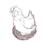 Farm- der Tiereikone der Hühnerskizze Dekorativer Hintergrund als stilisiert Strudel der Wellen Lizenzfreie Stockfotografie