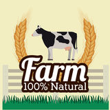 Farm design, vector illustration. Stock Image