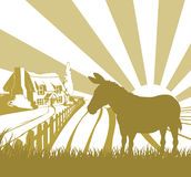 Farm donkey rolling fields vector illustration