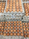 Farm egg in paper container,Closeup of many fresh brown eggs in Royalty Free Stock Images
