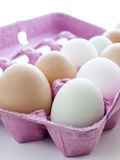 Farm eggs Stock Images