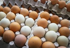 Farm eggs of different colors. Natural and healthy stock photography