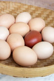 Farm eggs Royalty Free Stock Photo