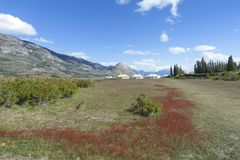 The Farm of Estancia Cristina in Los Glaciares National Park. Patagonia, Argentina. The estancia cristina on the Lake Argentino, near the upsala glacier, in los Royalty Free Stock Image