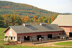 Farm in fall color Royalty Free Stock Photos