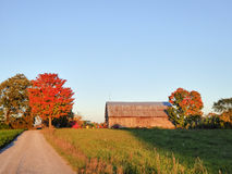 Farm with Fall colour Stock Images
