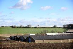 Farm & Farm Buildings Near Wakefield Stock Images