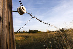 Farm Fence. Electrified, barb wire fence between two pastures. Insulator and fencepost lit with soft artificial light Stock Image
