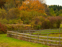 Farm fence Royalty Free Stock Images