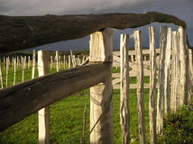 Farm Fence. Curved wooden fence stock image
