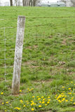 Farm fence and green field Stock Photo