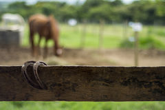 Farm fence Stock Photography