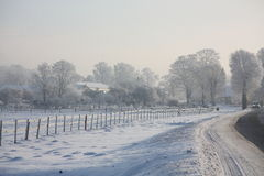 Farm fence near the road in winter Stock Photography
