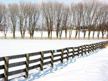 Farm fence and trees 1 Royalty Free Stock Photography