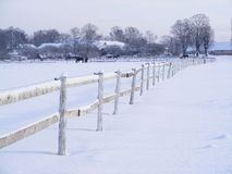 Farm fence in winter. View on farm fence in winter on the outskirts of Riga, Latvia Stock Photography